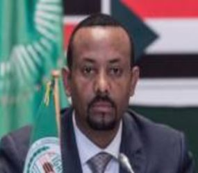 Ethiopia's PM vows 'final' push in Tigray