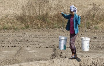 More than half a billion globally 'has no clean water'