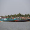 New home for Rohingya refugees emerges in muddy Bay of Bengal – Floating Islands