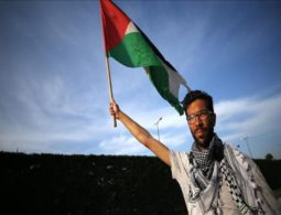 Swedish activist continues walk for Palestine