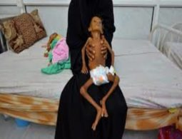 'We are on life support': doctor makes desperate plea from yemeni city of hodeidah as humanitarian crisis worsens
