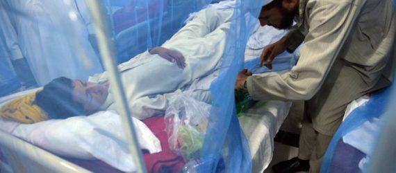Dengue cases soar to record high in Pakistan