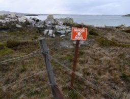 Falkland islands cleared of mines 38 years after war