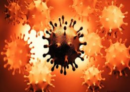 7 new Coronavirus variants discovered USA